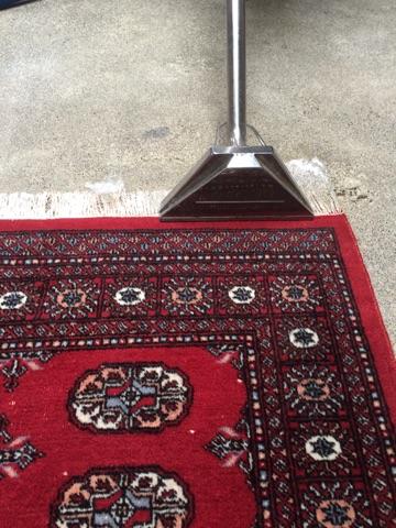 Budget rugs australia designer